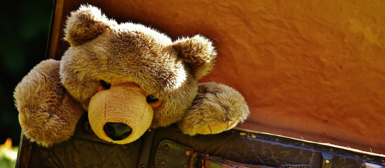Not so Smart Teddy Bears: What You Should Know About Internet of Things Security